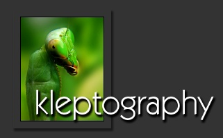 Kleptography Introduction